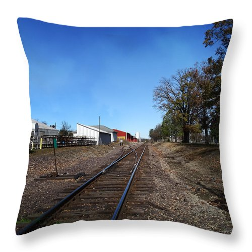Illinois Throw Pillow featuring the photograph Railroad Tracks Switch Station by Theresa Campbell