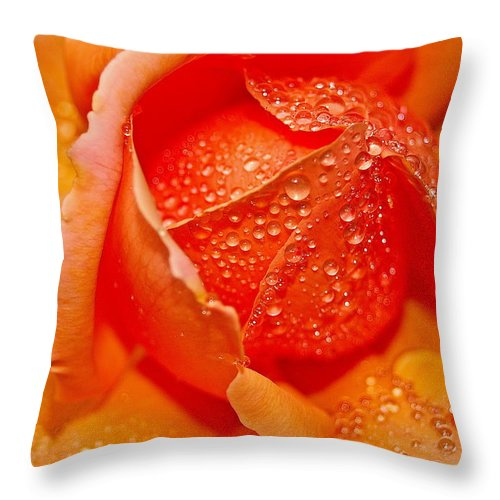 Flower Throw Pillow featuring the photograph Rain Drops by Mark Lemon