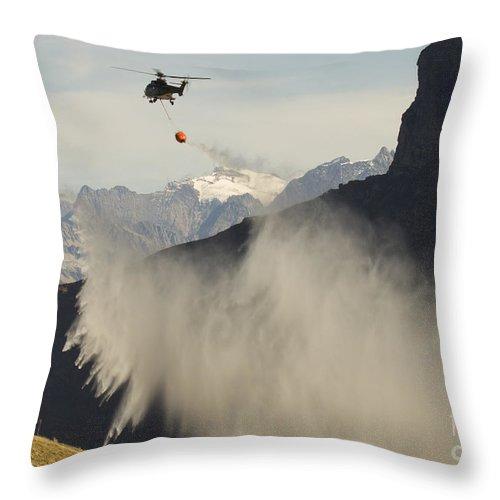 Puma Throw Pillow featuring the photograph Rain Makers by Angel Ciesniarska