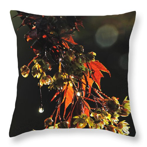 Nature Throw Pillow featuring the photograph Rain Soaked Leaves-3 by Steve Somerville