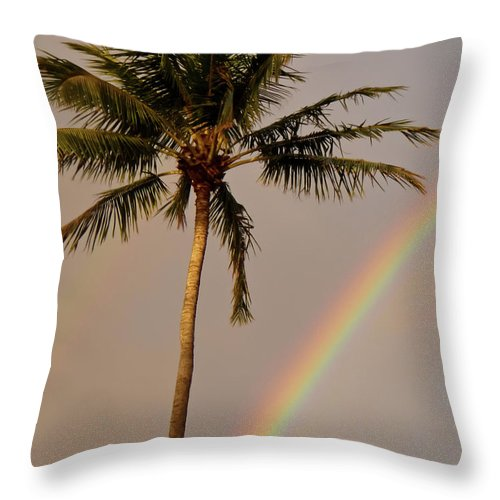Rainbow Throw Pillow featuring the photograph Rainbow And Palm Tree by Roger Mullenhour