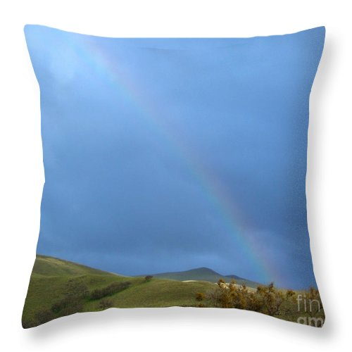 Artoffoxvox Throw Pillow featuring the photograph Rainbow Country Photograph by Kristen Fox