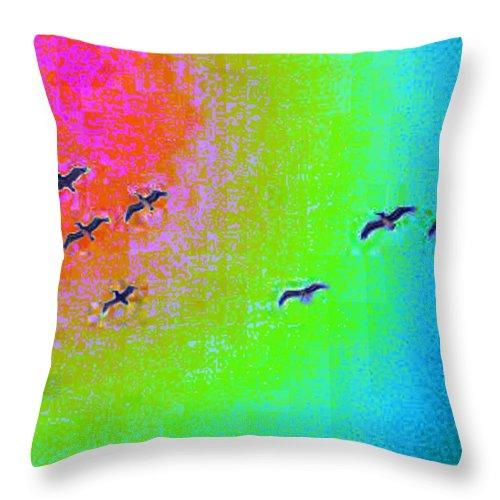 Birds Throw Pillow featuring the photograph Rainbow Gulls by Tim Allen