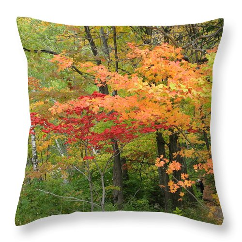 Fall Throw Pillow featuring the photograph Rainbow by Kelly Mezzapelle