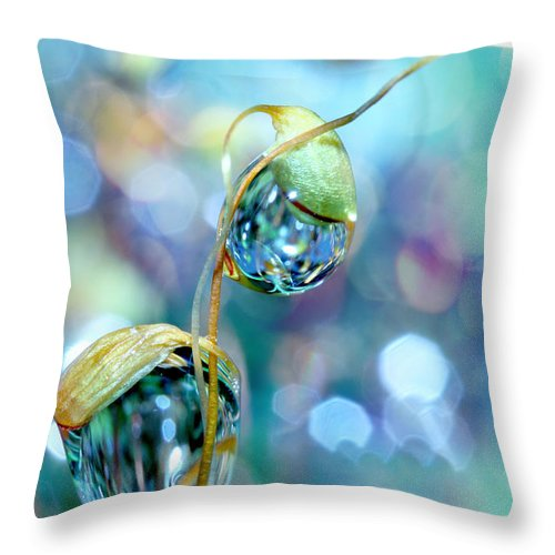 Moss Throw Pillow featuring the photograph Rainbow Moss Drops by Sharon Johnstone