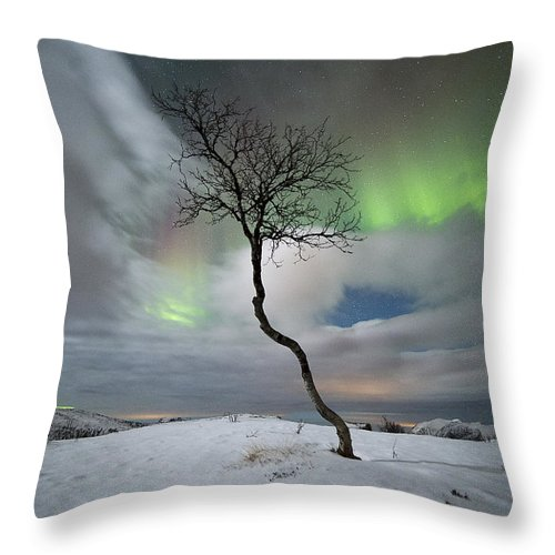 Tree Throw Pillow featuring the photograph Rainbow Tree by Ronny Aarbekk