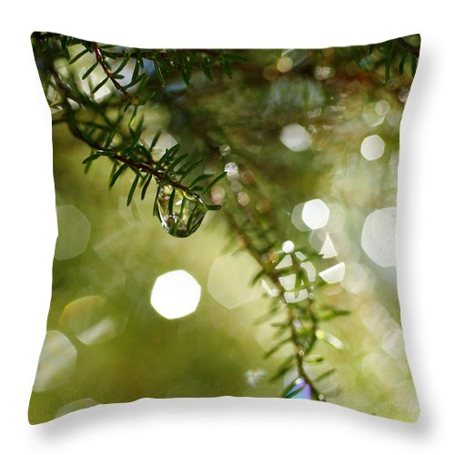 Dew Throw Pillow featuring the photograph Raindrops by Gaspar Avila