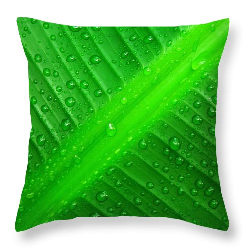 Nature Throw Pillow featuring the photograph Raindrops ... by Juergen Weiss