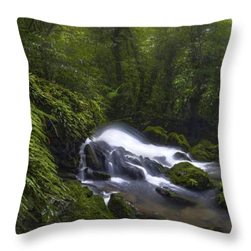 River Throw Pillow featuring the photograph Rainforest Riverflow Scene by Luis Lyons