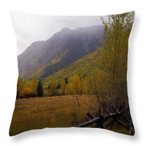 Fall Colors Throw Pillow featuring the photograph Rainy Fall by Marty Koch