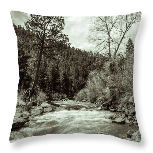 Artisans Throw Pillow featuring the photograph Rapids During Spring Flow On The South Platte River by Cary Leppert