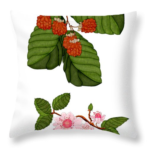 Raspberry Throw Pillow featuring the painting Raspberries And Raspberry Blossoms by Anne Norskog