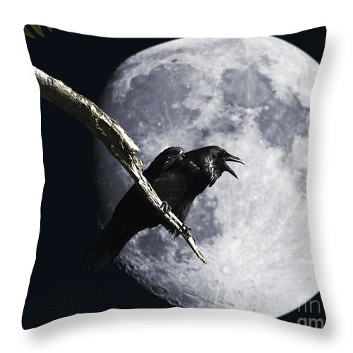 Wingsdomain Throw Pillow featuring the photograph Raven Barking at the Moon by Wingsdomain Art and Photography