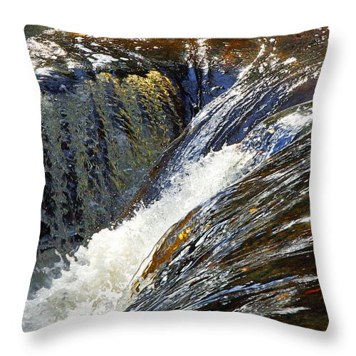 Water Throw Pillow featuring the photograph Ravenskill Falls by Francesa Miller
