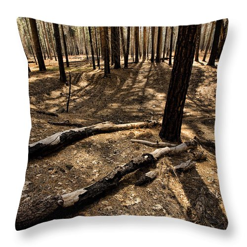 Yosemite Throw Pillow featuring the photograph Raw Yosemite by Bonnie Bruno