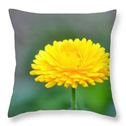 Yellow Throw Pillow featuring the digital art Ray Of Sunshine by Danecha Osborne