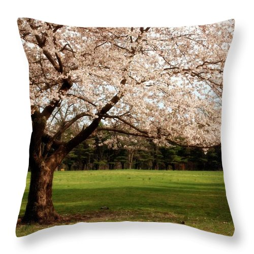 Cherry Blossom Trees Throw Pillow featuring the photograph Reaching Out - Ocean County Park by Angie Tirado