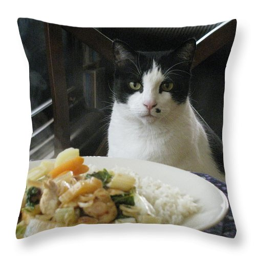 Cat Throw Pillow featuring the photograph Ready For Dinner by Alfred Ng