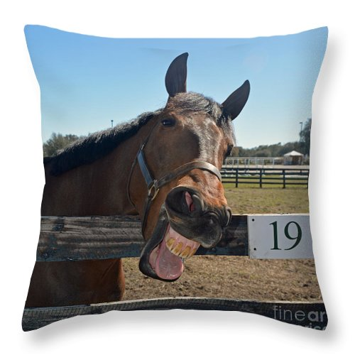 Horses Throw Pillow featuring the photograph Really?? by Pam Schmitt