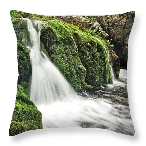 Reany Falls Throw Pillow featuring the photograph Reany Falls 1 by Michael Peychich