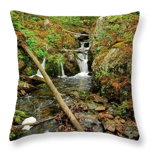 Reany Falls Throw Pillow featuring the photograph Reany Falls 2 by Michael Peychich
