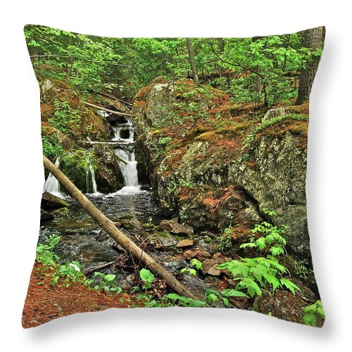 Reany Falls Throw Pillow featuring the photograph Reany Falls 3 by Michael Peychich
