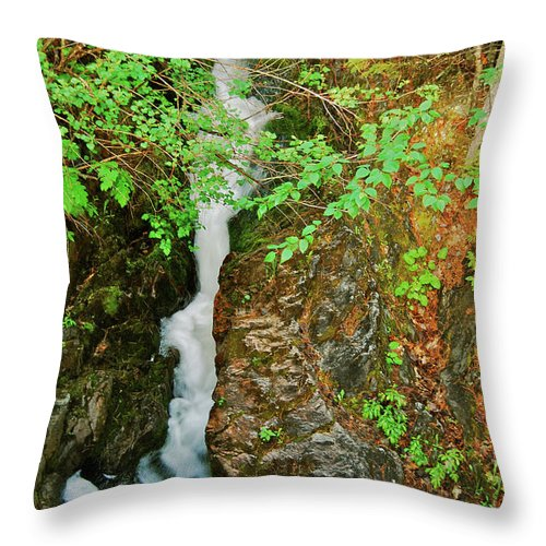 Reany Falls Throw Pillow featuring the photograph Reany Falls 4548 by Michael Peychich