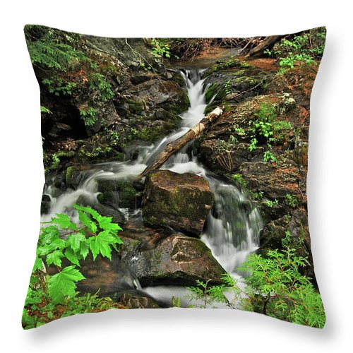 Reany Falls Throw Pillow featuring the photograph Reany Falls 5 by Michael Peychich