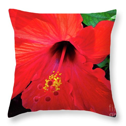 Hawaiian Flower Throw Pillow featuring the photograph Reb Hibiscus Flower by Bette Phelan