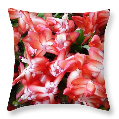 Plant Throw Pillow featuring the photograph Red Abundance by Valerie Ornstein