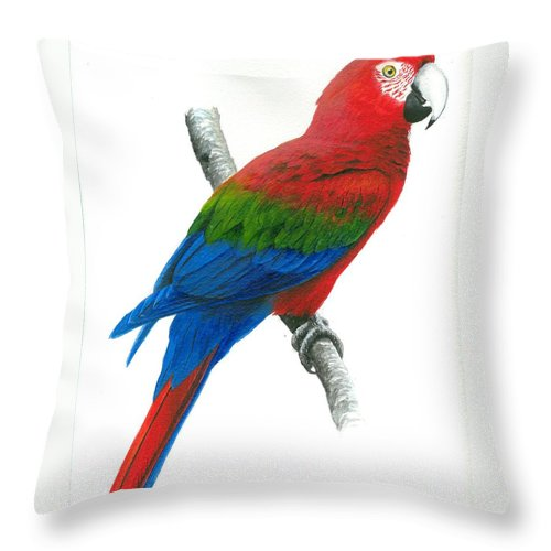 Chris Cox Throw Pillow featuring the painting Red And Green Macaw by Christopher Cox