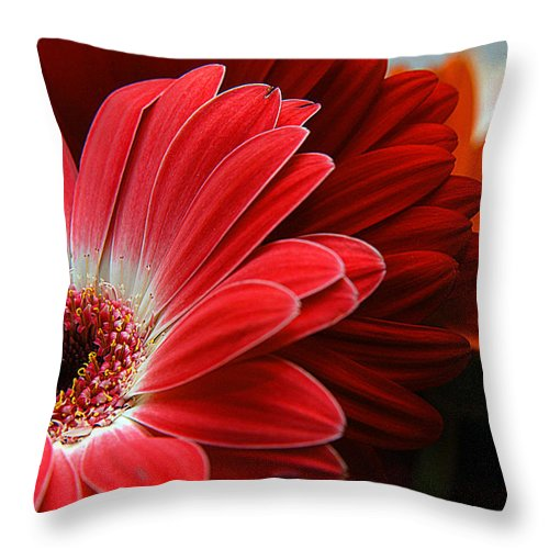 Clay Throw Pillow featuring the photograph Red And Orange Florals by Clayton Bruster