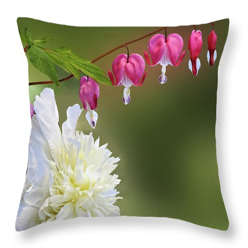 Red And White Throw Pillow For Sale By Judy Johnson