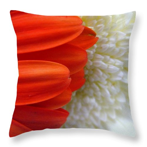 Flowers Throw Pillow featuring the photograph Red And White by Rhonda Barrett