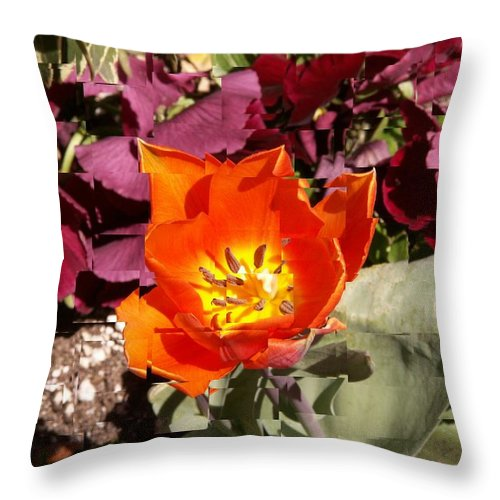 Flower Throw Pillow featuring the digital art Red And Yellow Flower by Tim Allen