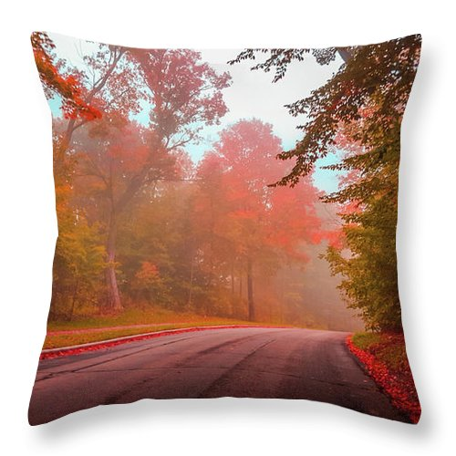 Autumn Throw Pillow featuring the photograph Red Autumn by Art Spectrum