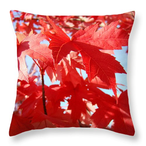 Autumn Throw Pillow featuring the photograph Red Autumn Leaves Art Prints Canvas Fall Leaves Baslee Troutman by Baslee Troutman