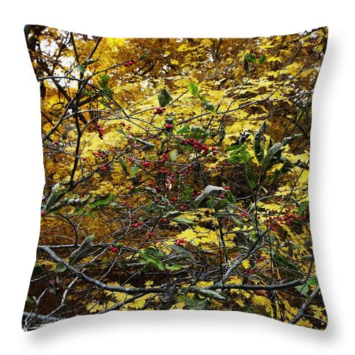 Fall Folliage Throw Pillow featuring the photograph Red Berries In Fall Folliage by Anna Villarreal Garbis