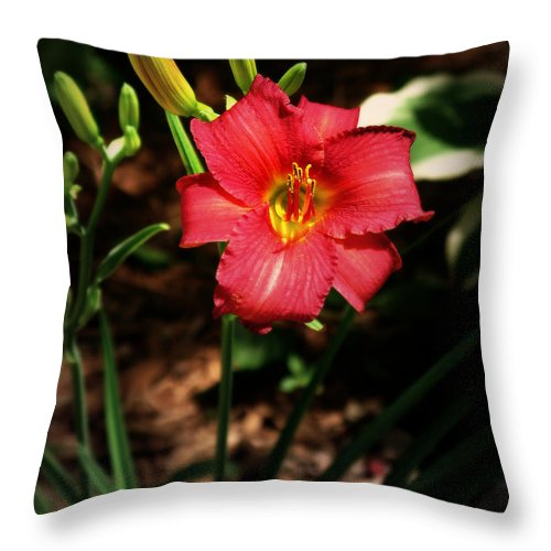 Flower Throw Pillow featuring the photograph Red Bloom by Perry Webster