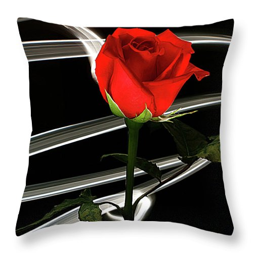 Rose Throw Pillow featuring the photograph Red by Bruce Bradley