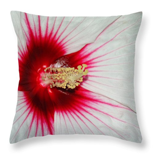 Red And White Throw Pillow featuring the photograph Red Burst by Suzanne Gaff