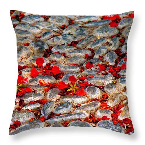 Red Throw Pillow featuring the photograph Red Cobblestone Road by James BO Insogna