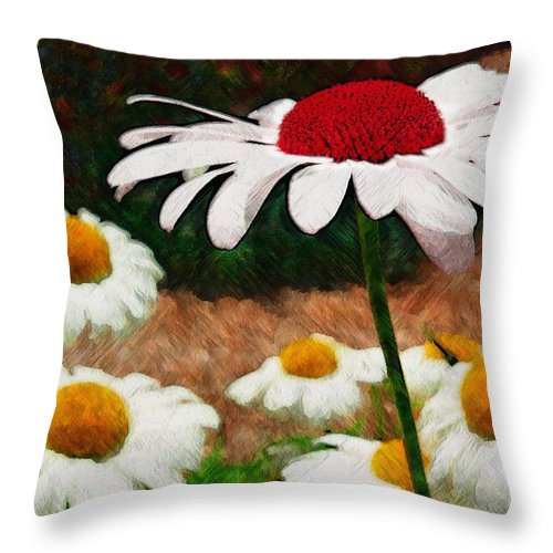 Ebsq Throw Pillow featuring the photograph Red Eyed Daisy by Dee Flouton