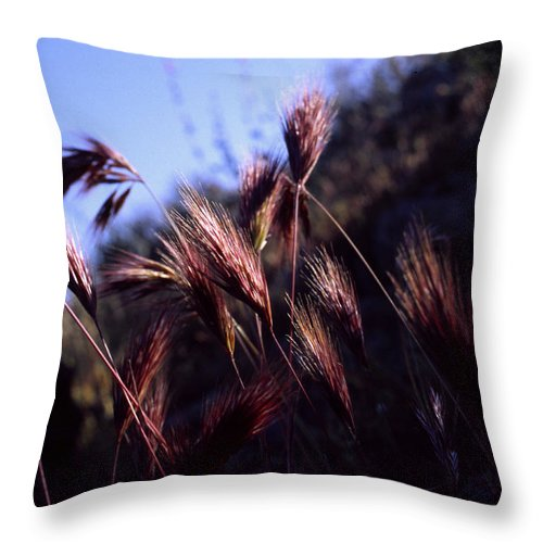 Nature Throw Pillow featuring the photograph Red Feathers by Randy Oberg