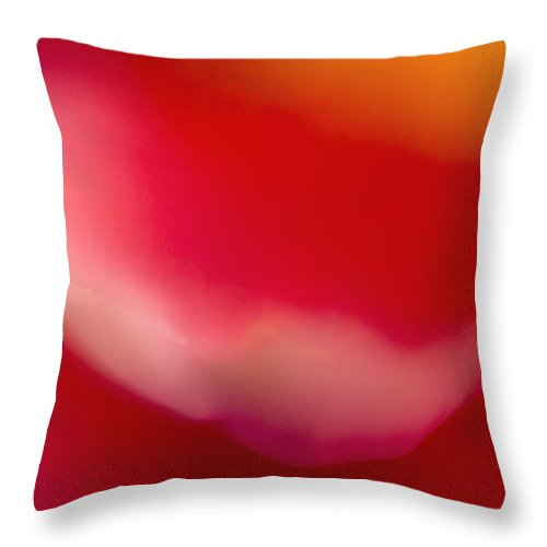 Flower Throw Pillow featuring the photograph Red Flower Abstract by Silke Magino