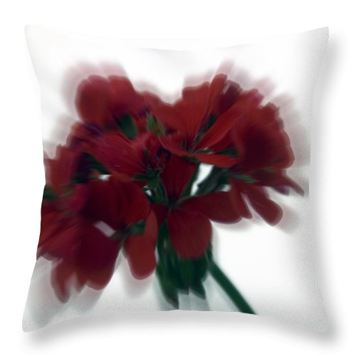 Red Throw Pillow featuring the photograph Red Flower Motion by Cliff Norton