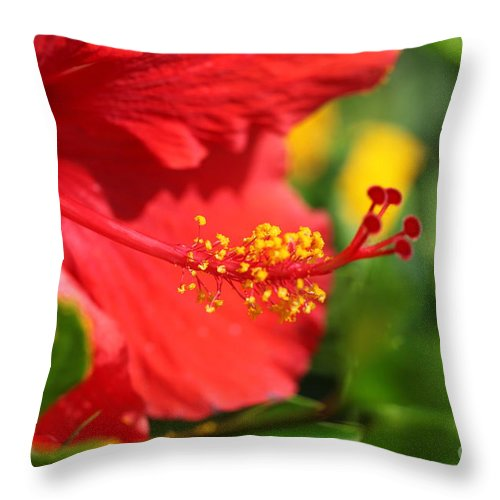 Flowers Throw Pillow featuring the photograph Red Hibiscus And Green by Nadine Rippelmeyer