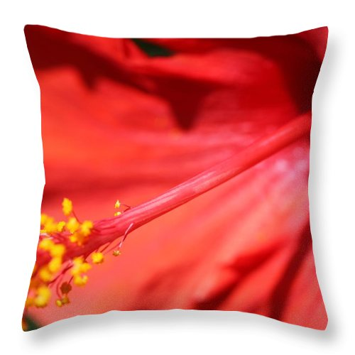Red Throw Pillow featuring the photograph Red Hibiscus by Nadine Rippelmeyer