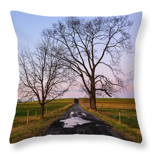 Purple Sky Throw Pillow featuring the photograph Red Lane With Purple Sky by Tana Reiff