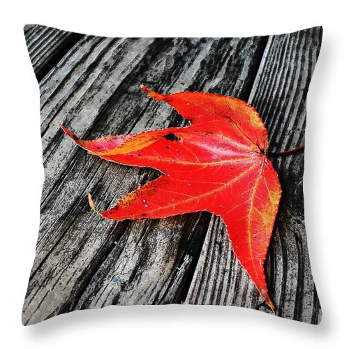Nature Throw Pillow featuring the photograph Red Leaf by Linda Sannuti
